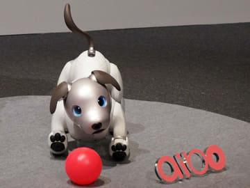 ソニーのロボット犬「aibo」復活! 心のつながりをもつエンタメロボ。19.8万円
